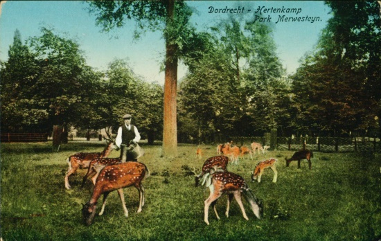 hertenkamp rond 1915