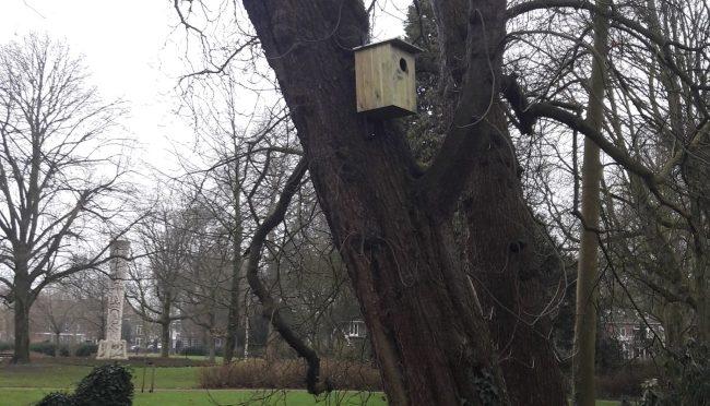 Drie nestkasten voor spechten en uilen geplaatst