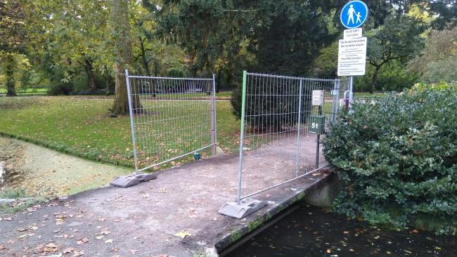 Hekken ingang Groenedijk tijdelijk weg voor renovatie