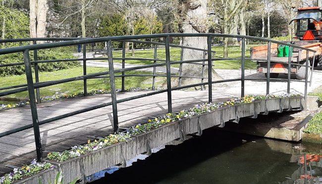 Violen voor de brug en schoonmaakbeurt voor Levensboom